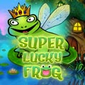 Super-Lucky-Frog-Video Slots