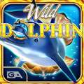 Wild-Dolphin-Video Slots